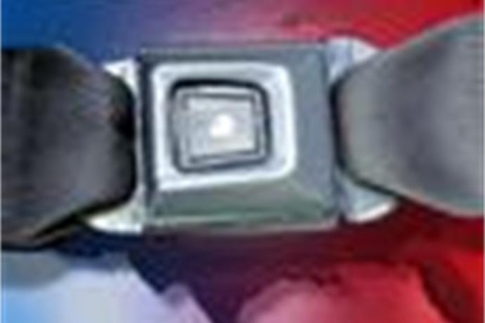 Seatbelts on Buses_-4746965799091353223