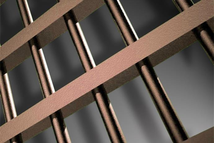 Jail Bars_-8705151175163231220