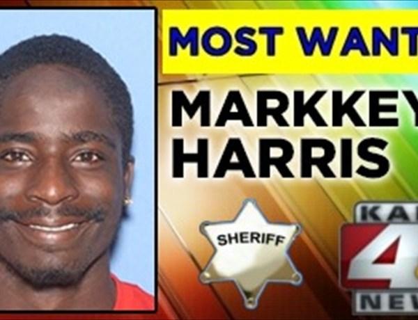 Markkeys Harris_-3731142068535276143