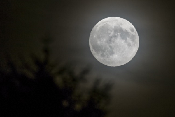 Full Moon_1450989844520.png