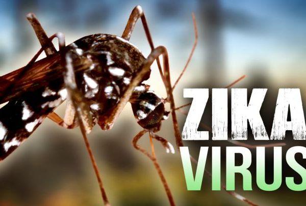 Zika Virus 2_1461092123950.jpg