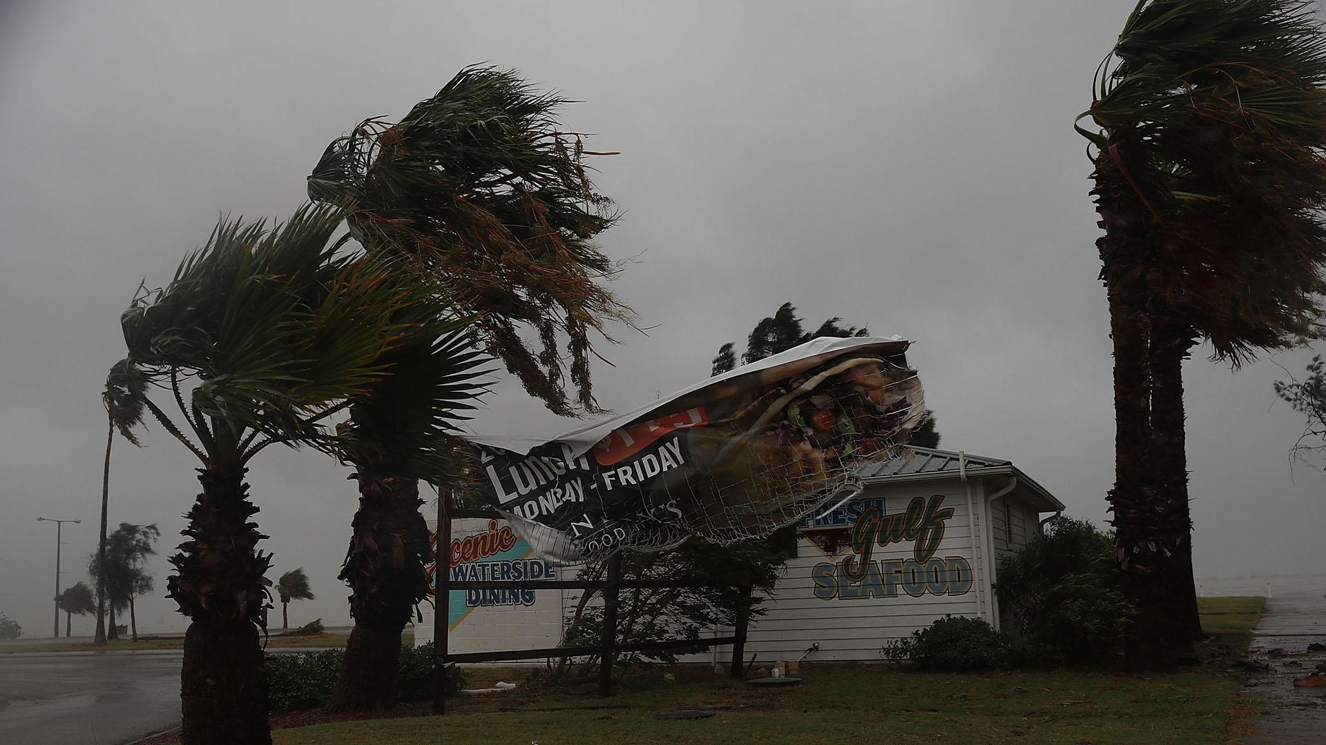 Hurricane Harvey, Corpus Christi, Texas, sign blows in wind11609968-159532