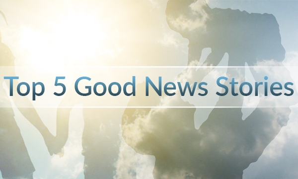 TOP 5 GOOD NEWS STORIES_1507335875467.jpg