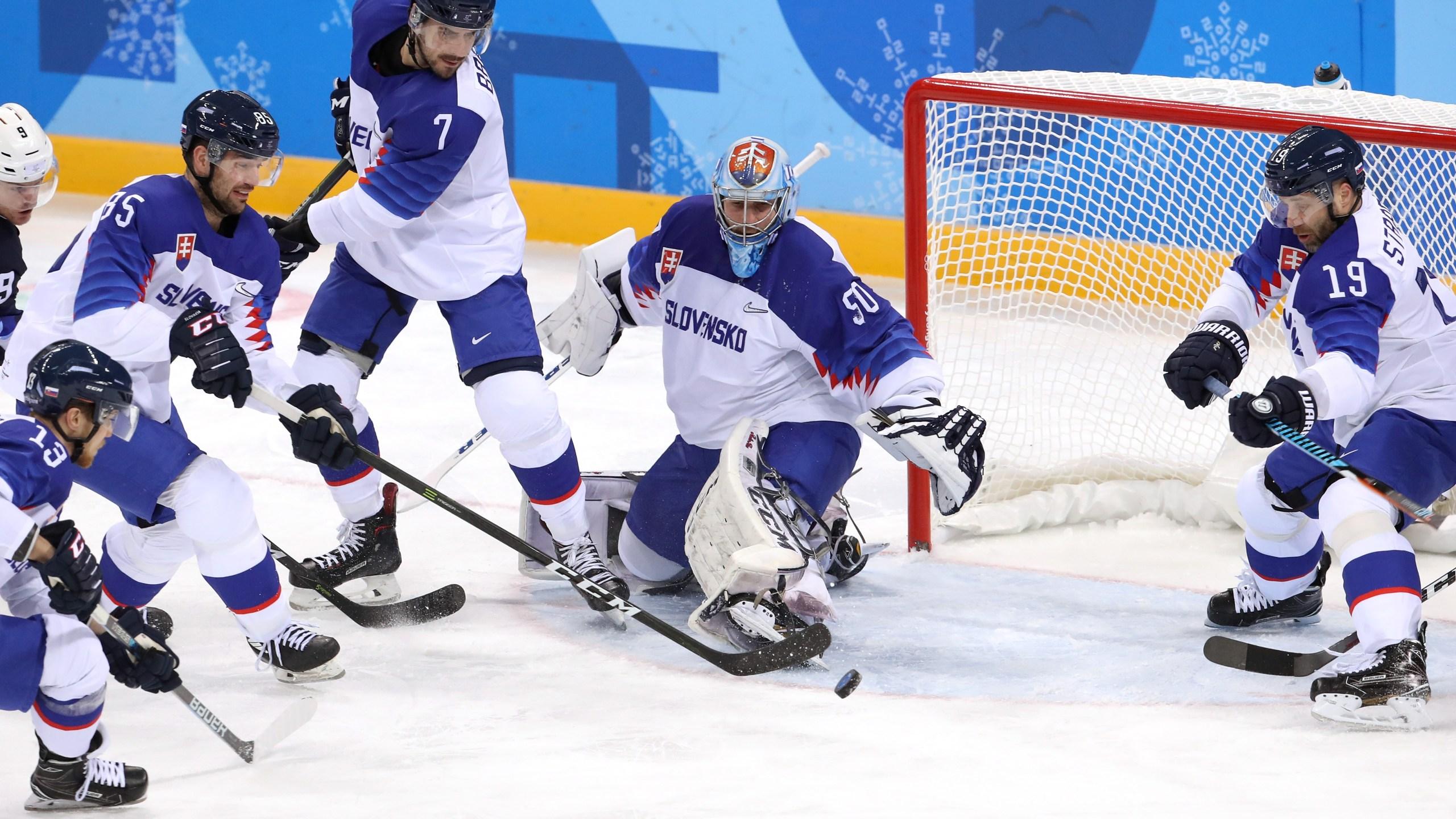 Team USA Hockey vs Slovenia 9-54729046