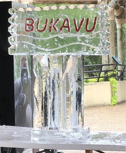 Bukavu_1532799622478.jpg