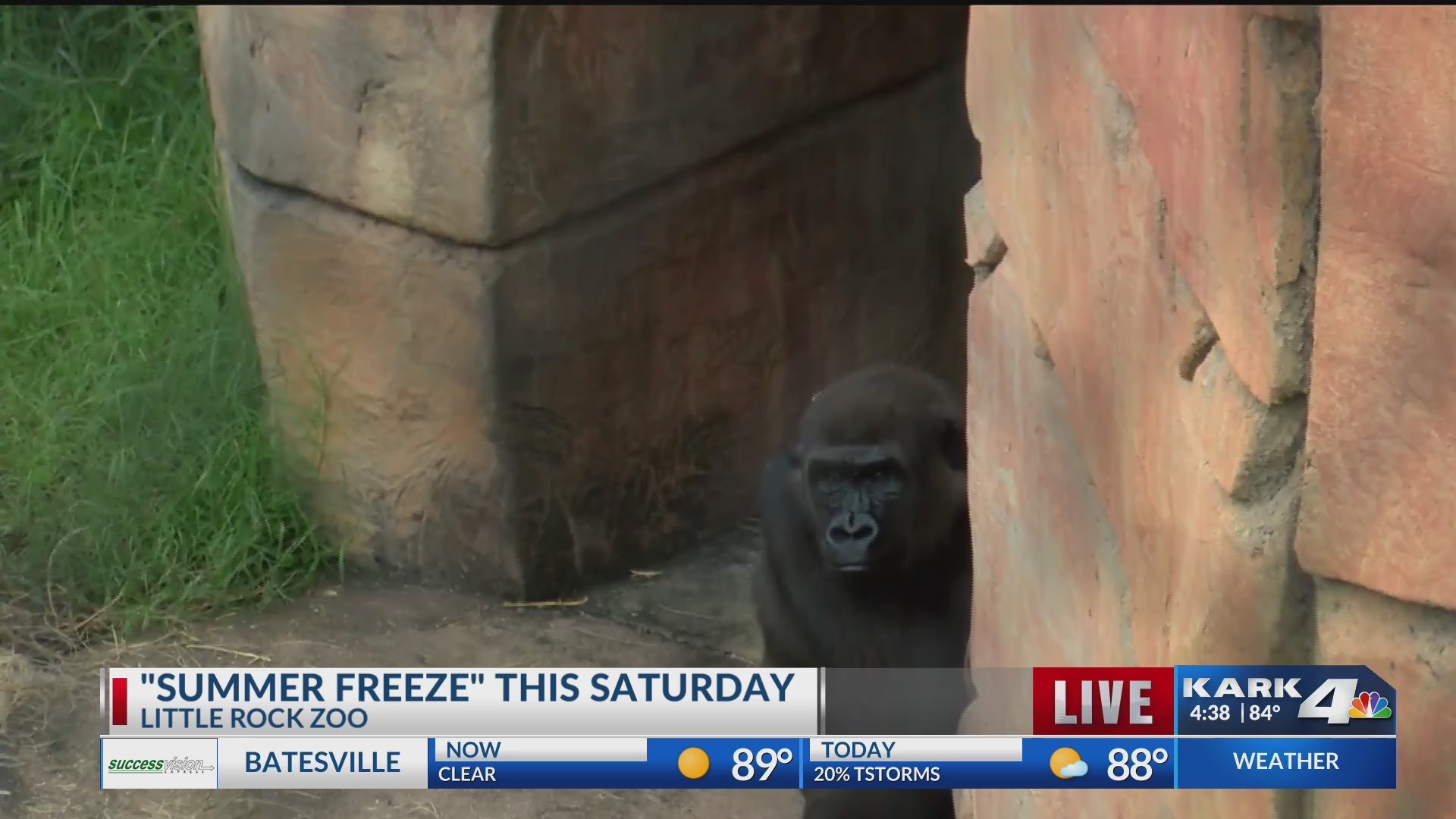 _Summer_Freeze__This_Saturday_0_20180727221026