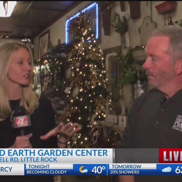 Good Earth: Christmas Decorations