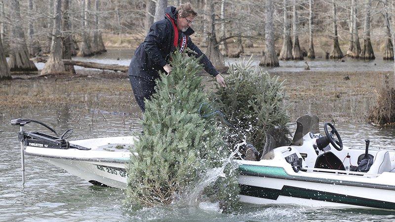 Christmas Trees for Fish Cover_1545852309618.jpg.jpg