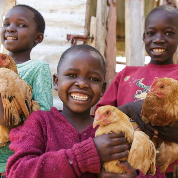 Kids with Chickens - Heifer International_1544741010087.JPG.jpg