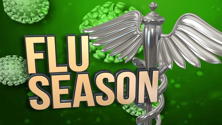 Flu Season_1541538651440.jpg.jpg