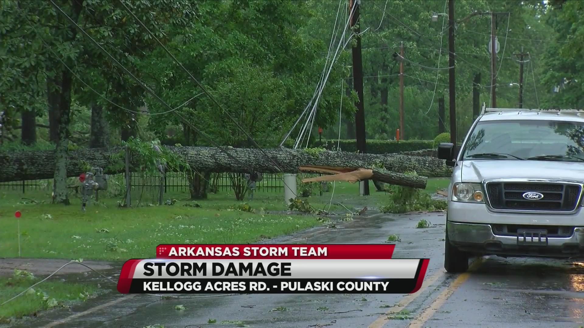 Tree_falls_on_power_line___blocks_Pulask_0_20190502225316