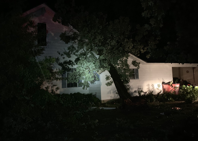 Tree down in Harrell - Calhoun County June 19 - photo by Jacob Cain__1561005088996.PNG.jpg