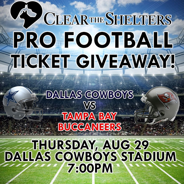 Pro Football Ticket Giveaway