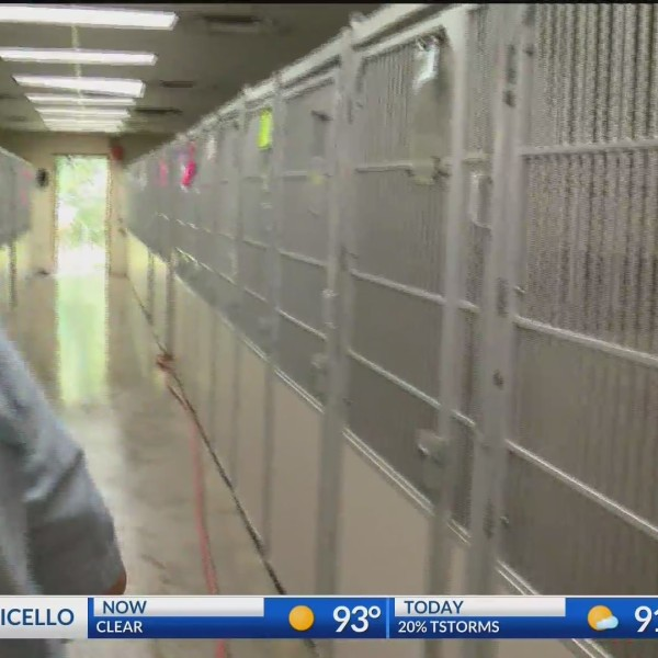 Clear the Shelters | KARK
