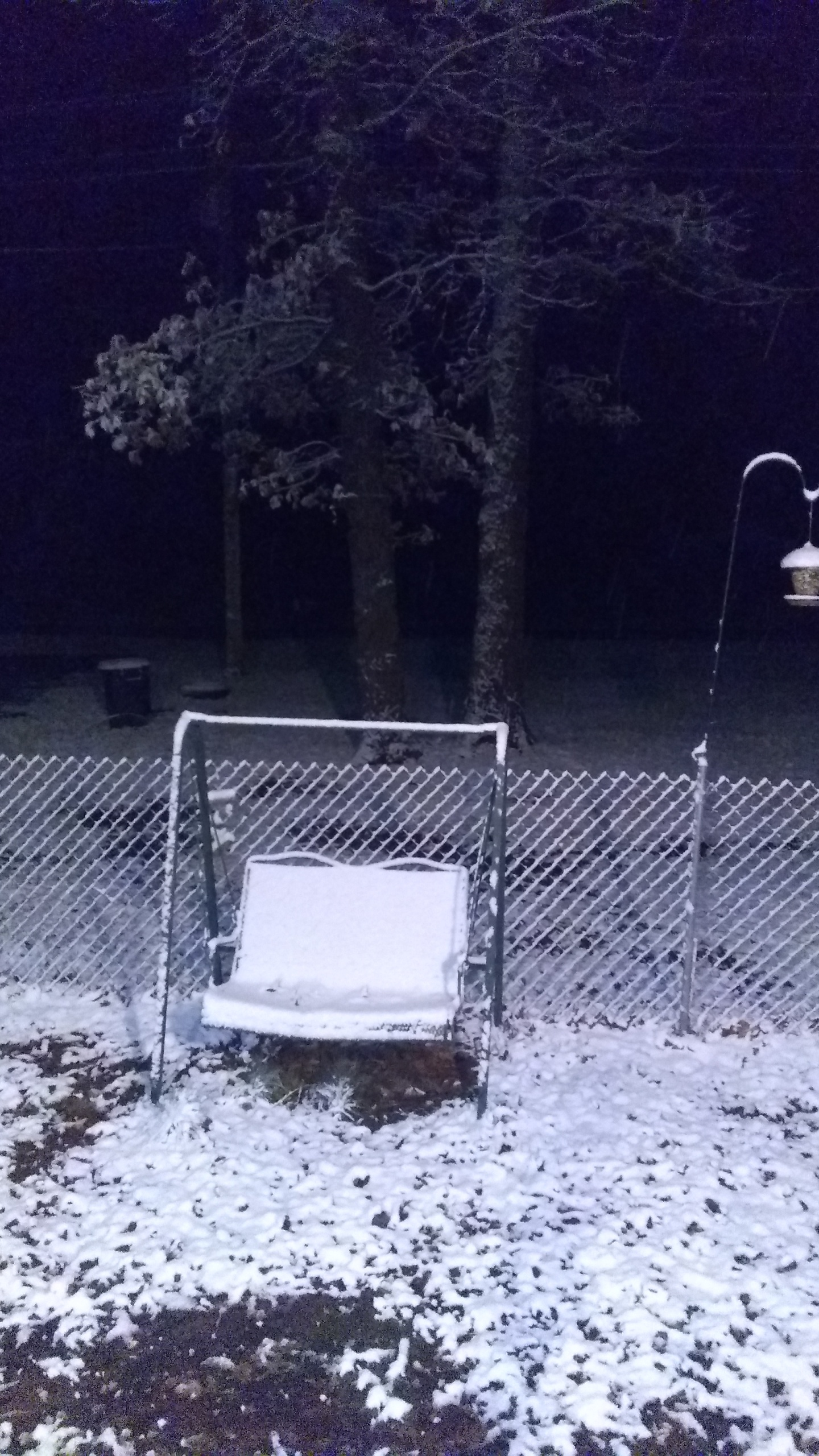 Skin Allergies Mount Nebo Arkansas Christmas 2021 Photos Snow Falls In Parts Of Arkansas Overnight Monday Morning Kark